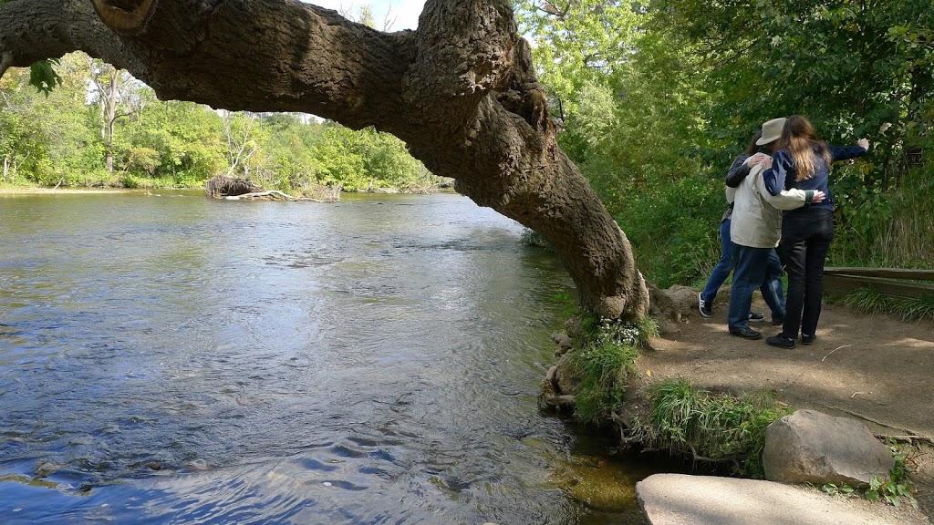 River Landing Nichols Arboretum Matthaei Botanical Gardens And Nichols Arboretum