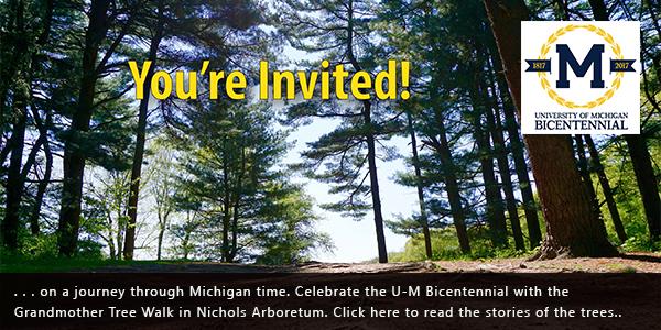 Grandmother Tree Walk bicentennial banner