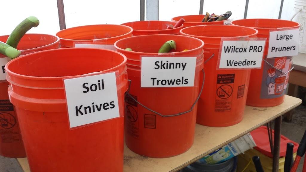 Buckets holding garden tools