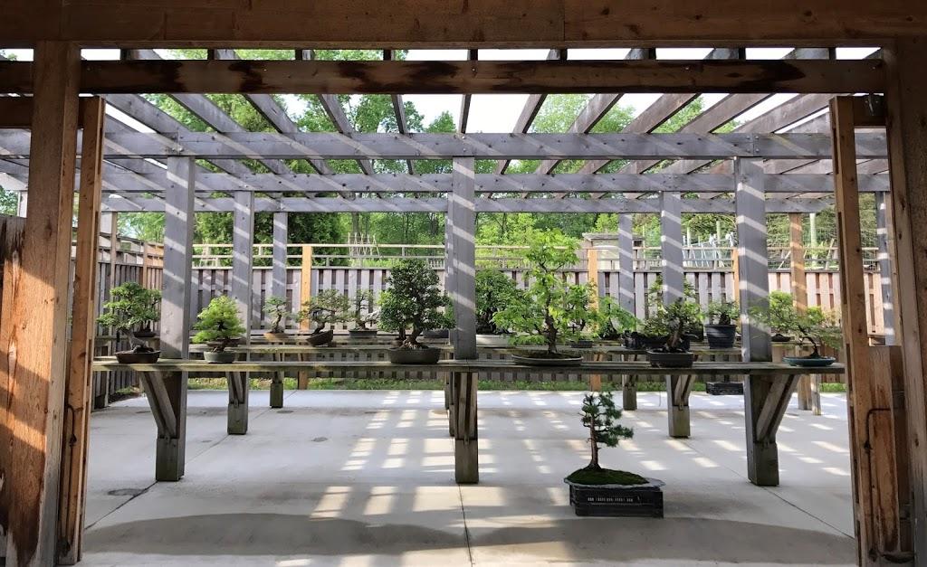 Bonsai garden work area