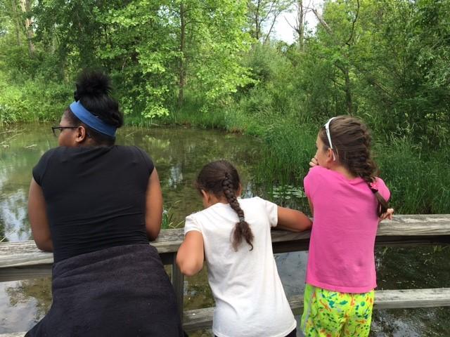 Kids looking at wetland