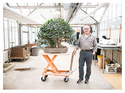 Jerry Meislik with his bonsai