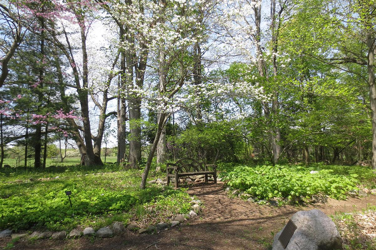 Helen V Smith Wildflower Garden