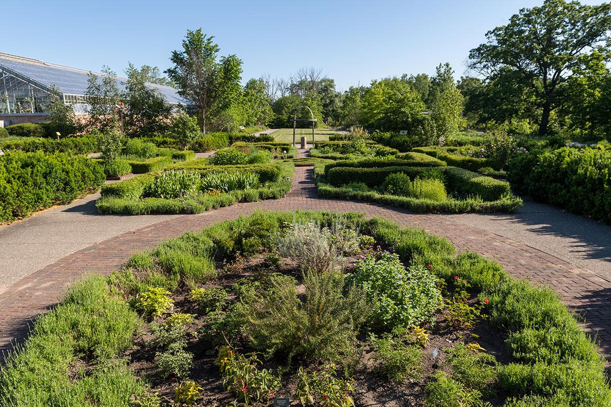 Herb Knot Garden