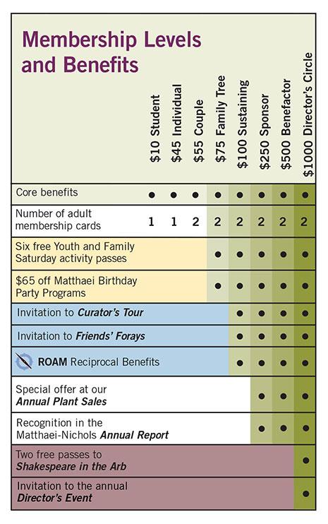 Membership levels chart