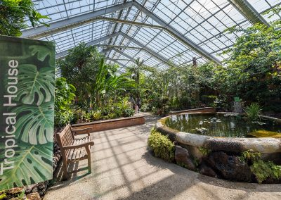 Tropical House in the Conservatory
