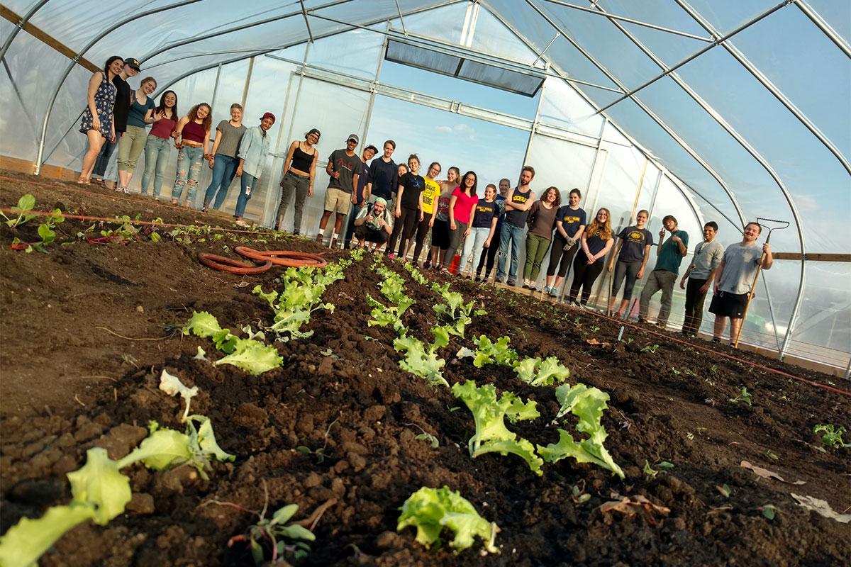Campus Farm - Matthaei Botanical Gardens and Nichols Arboretum