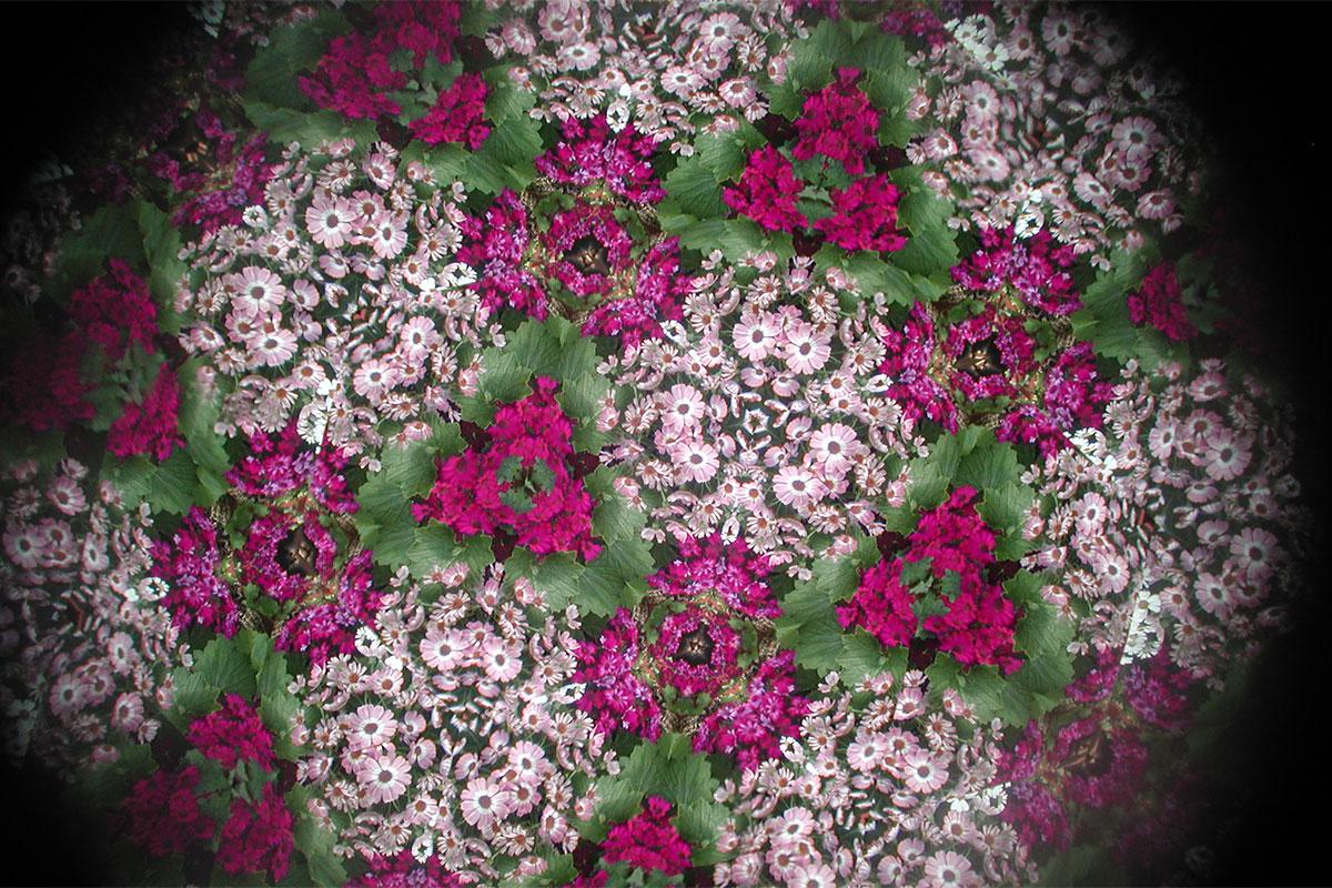 Kaleidoscope at Matthaei