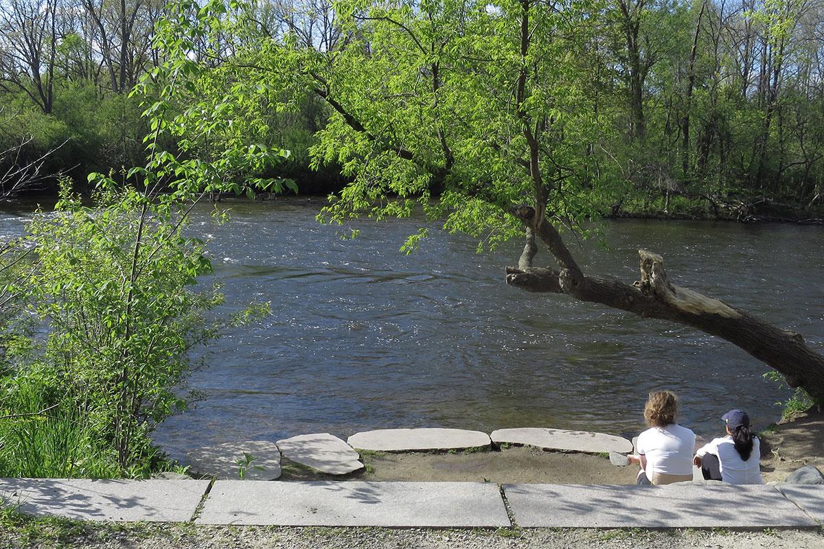 Riverfront at Huron River, Nichols Arboretum