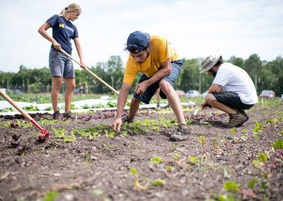 Students working on the Campus Farm