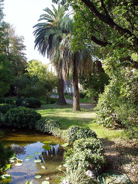 Botanical garden of Pisa, Italy