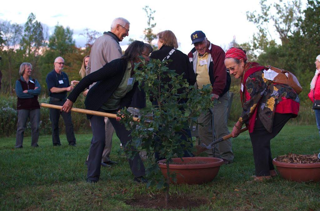 Celebrating the University of Michigan Bicentennial and Matthaei-Nichols long-time members by planting an oak tree at Matthaei Botanical Gardens