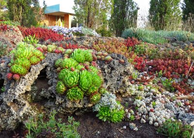 The Marie Azary Rock Garden at Matthaei