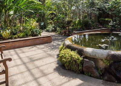 Conservatory Tropical House at Matthaei