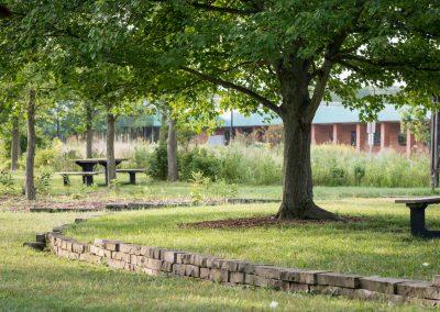 Norman Memorial Grove at Matthaei