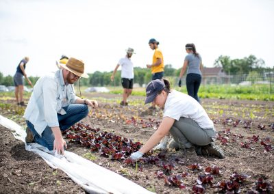 Students working at the Campus Farm