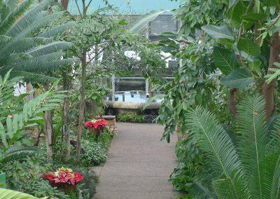 Conservatory path