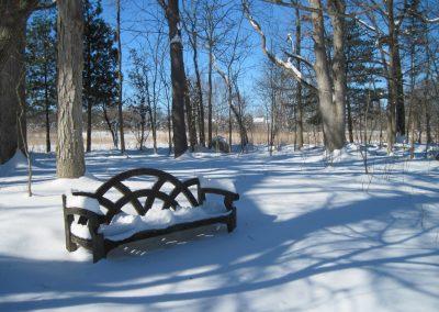 Bench in the Helen V. Smith Woodland Wildflower Garden