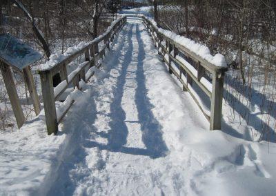 Footbridge near the trail head at Matthaei