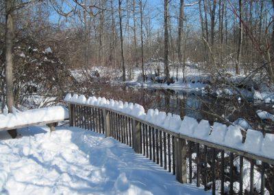 Fleming Creek Overlook