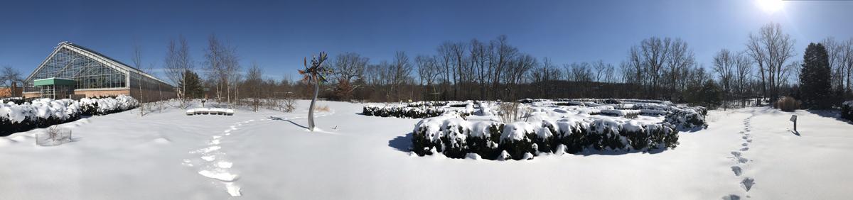 Panoramic image of the gardens at Matthaei
