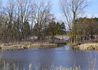 BRideg at the weir at Willow Pond