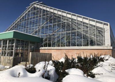 Conservatory exterior in winter