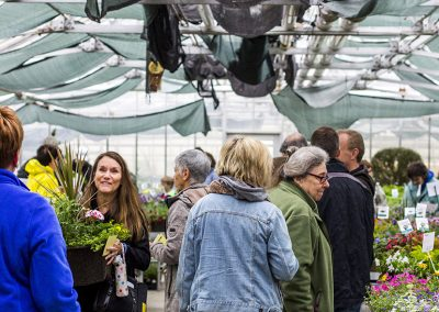 Busy scene of shoppers during the Mother's Day Plant Sale.