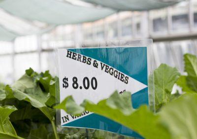 Herbs & Veggies Sign