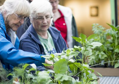 Two women looking at plants.