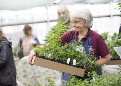 Volunteer holding basket of plants.