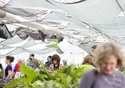Several people browsing plants within a greenhouse.