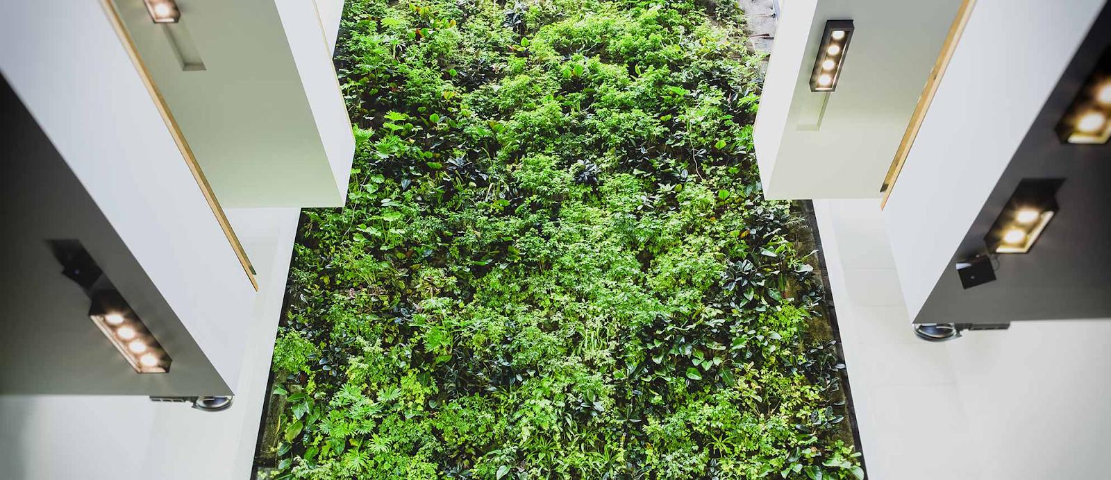 Green wall at Univ. of Guelph