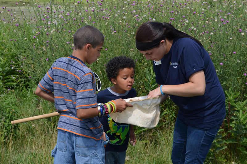 Things with Wings - Free Family Event Sunday, July 29 ...