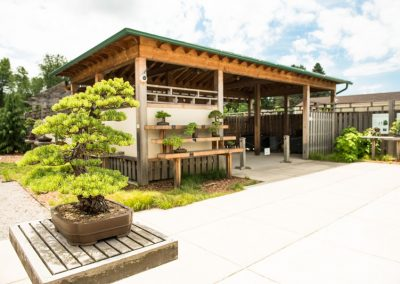 The bonsai and penjing garden at Matthaei. Photo by Kim Scholl.