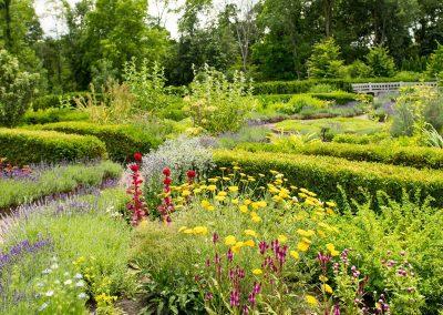 The Alexandra Hicks Herb Knot Garden at Matthaei. Photo by Kim Scholl.