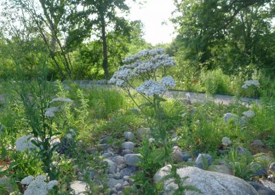 A view of the Great Lakes Gardens at Matthaei.