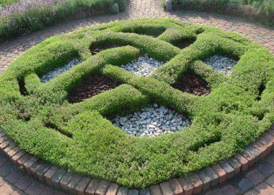 The knot in the Alexandra Hicks Herb Knot Garden at Matthaei.