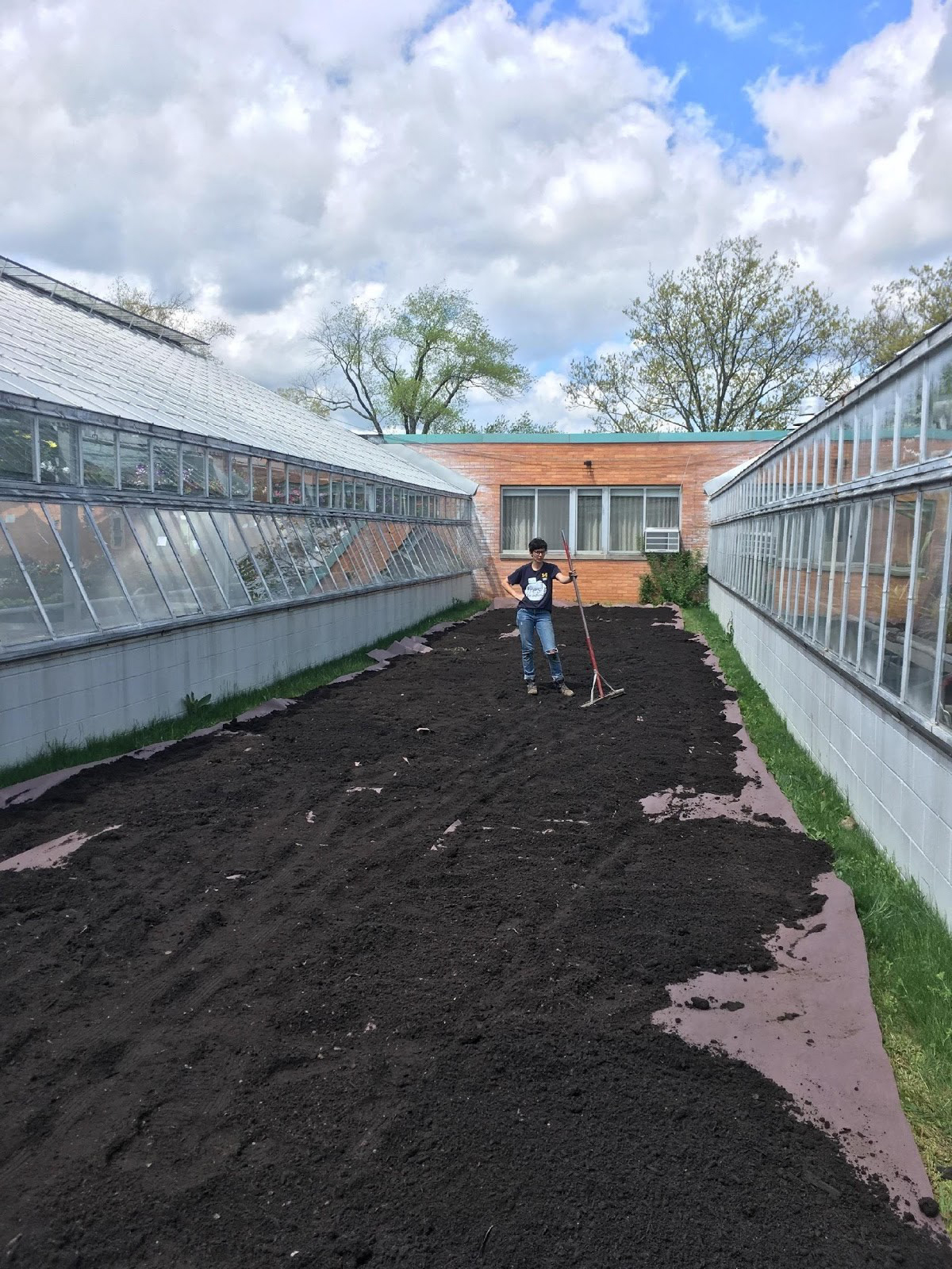 Laying down compost in the heritage seeds garden space
