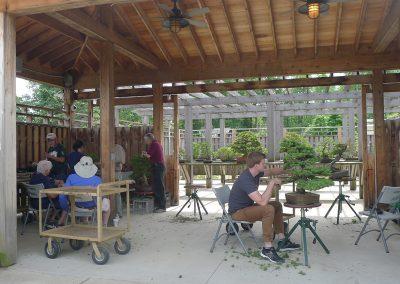Bjorn Bjorholm working in the bonsai and penjing garden.