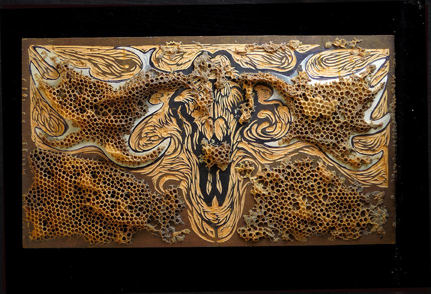 Hanka 26 Moose skull embalmed