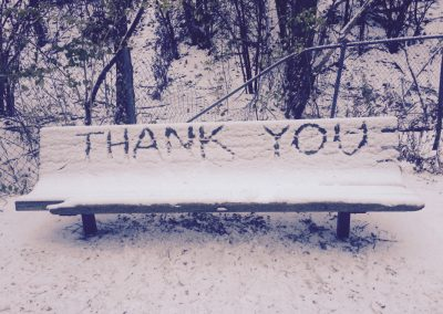 Thank you written in snow on a bench.