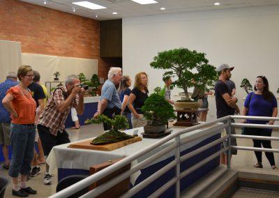 Visitors at the annual bonsai show at Matthaei.