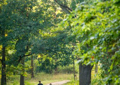 Walking the dog in Nichols Arboreutm. Photo by Scott Soderberg.