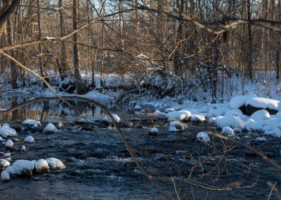 Fleming Creek snow caps