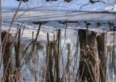 Patterns and reflections of snow and water at Matthaei Botanical Gardens.