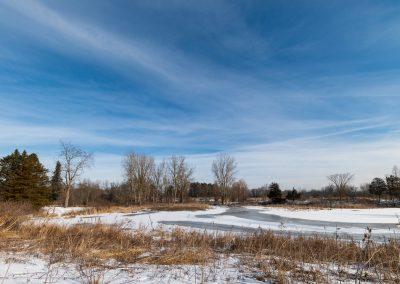 Willow Pond at Matthaei, waiting to thaw. Photo by John Metzler.