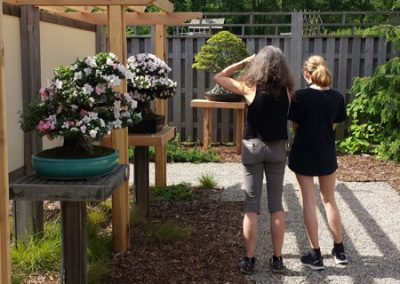 Visitors to the Bonsai in Bloom display at Matthaei