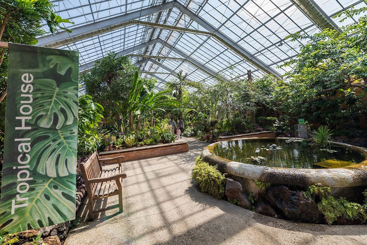 Matthaei conservatory tropical house