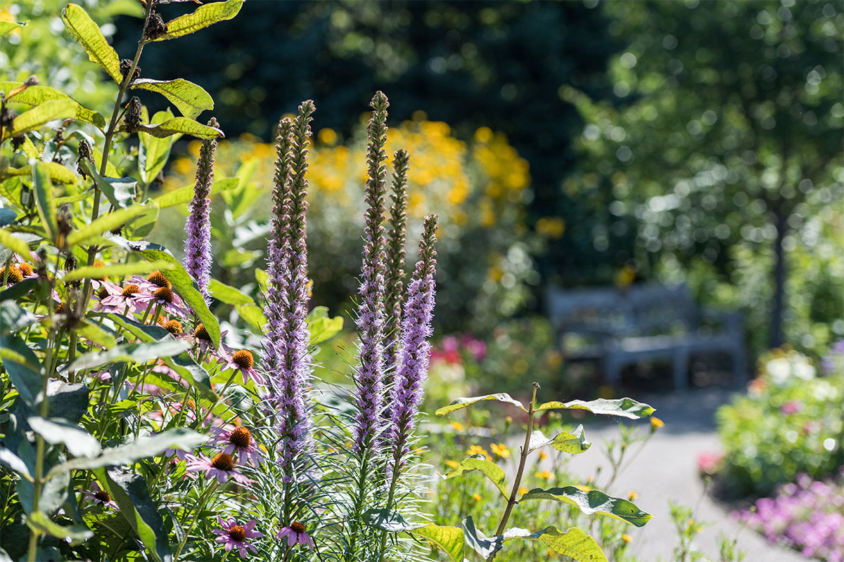 Gateway-Garden-Scott-Soderberg